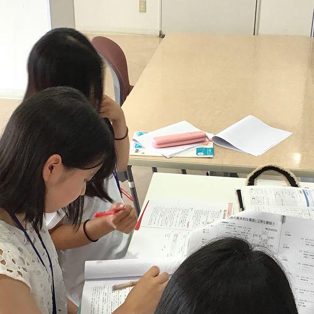 看護学科3年生は夏期セミナーや自主学習で登校しています。解剖生理を究めよう!*(^o^)/*Yes,you can!